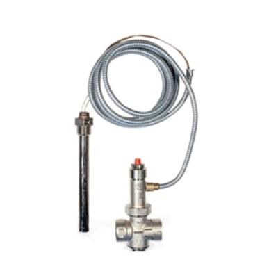 Watts scarico di sicurezza termico per caldaie a combustibile solido a doppia sicurezza 3/4